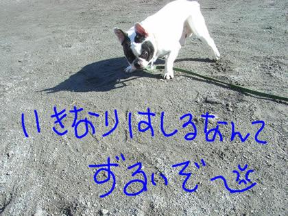 20090114c.jpg