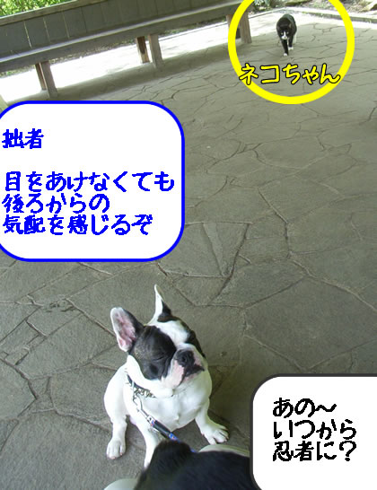 20090422q.jpg