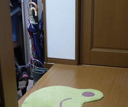2012091002.jpg